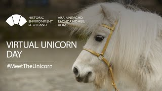 Virtual Unicorn Day