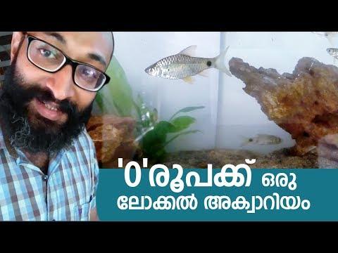 ചെലവില്ലാതെ അക്വാറിയം സെറ്റ് ചെയ്യാം .Kerala Local Vlog #50. zero cost aquarium