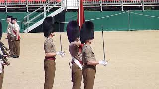 Rehearsal for the Trooping the Colour 2019 14 | Music Jinni