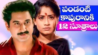 Pandanti Kapuraniki 12 Sutralu Full Movie || Suman, Vijaya Shanthi || Telugu Hit Movies