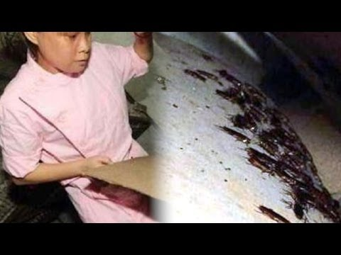 Woman Keeps 100k Cockroaches as Pets