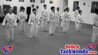 Basic Taekwondo Class for Children