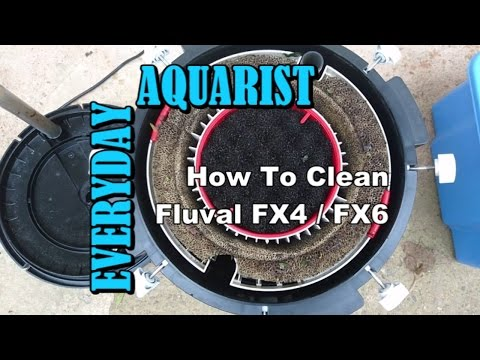 Fluval FX4 & FX6 Filter: Cleaning and Maintenance
