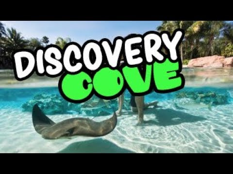 Por dentro do DISCOVERY COVE