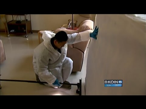Public housing residents live in fear of bed bugs