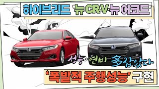 혼다, 하이브리드 더한 '뉴 CR-V'·'뉴 어코드' 출시...'폭발적 주행성능' 구현