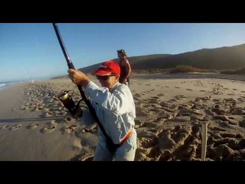 Kalbarri Mulloway Fishing