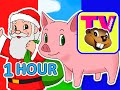 Kids 1 Hour Tv Show Busy Beavers Bbtv S1 E5 And E6 Kindergar