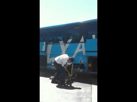 Wheelchair Accessible Van Nuys-LAX Flyaway Bus
