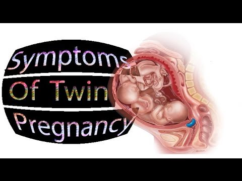 Symptoms Of Twin Pregnancy- SheCare