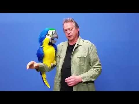 MEGA MACAW Parrot Puppet by Axtell