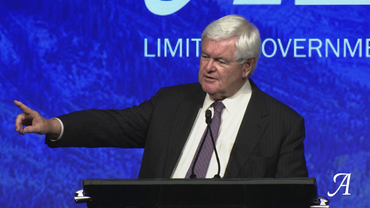 Newt Gingrich: Cut Taxes, Save States