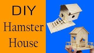 popsicle+stick+hamster+toy Videos - 9tube tv