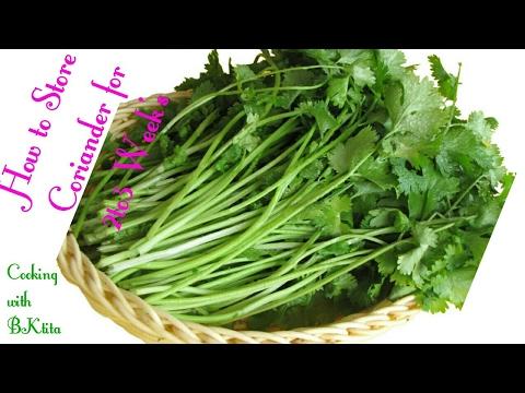 Keep coriander leaves fresh for longer | How to store cilantro | How to keep Coriander Leaves Fresh