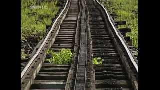 Mount Washington Cog Railway - das letzte Zahnradabenteuer
