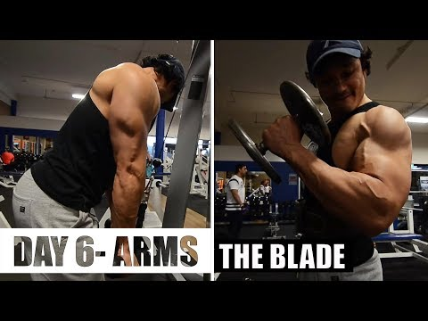 THE BLADE  DAY- 6 ARMS (Bicep-Tricep-Forearm) 12 weeks cutting program by JEET SELAL