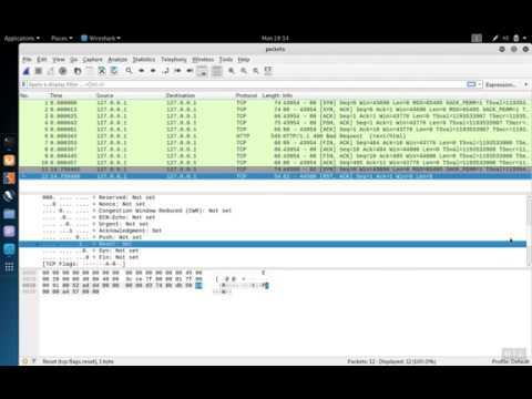 Demo of TCP 3-way Handshake