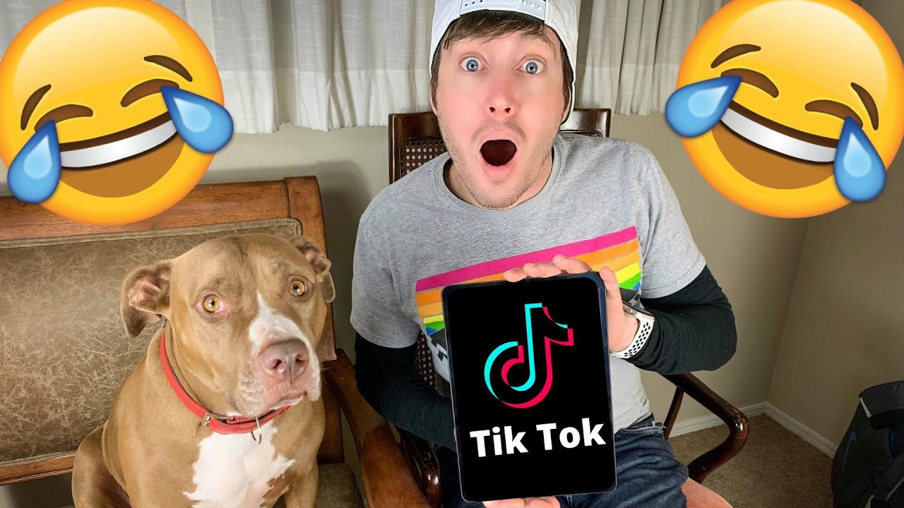 OUR BEST TIKTOKS VOL. 3 | Robby and Penny