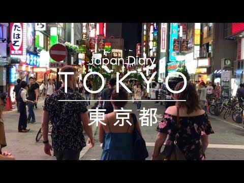 Japan Diary: Tokyo (Shinjuku, Shibuya, Akihabara, Ginza)