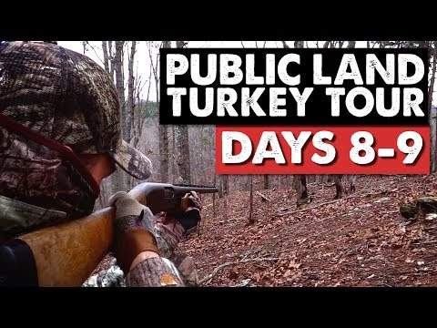 TAG-TEAM CALLING, AARON GETS HIS SHOT! - Public Land Turkey Tour Days 8-9