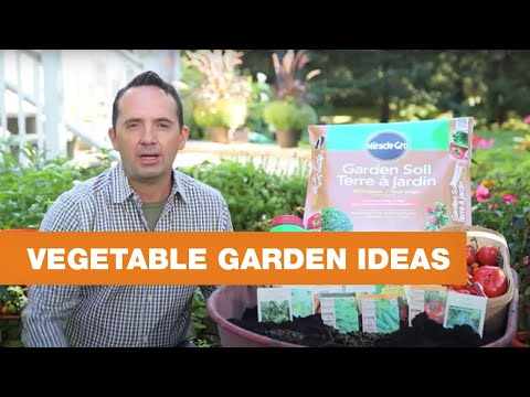Things you need to know about vegetable gardens