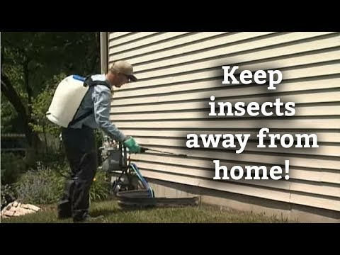 How to Keep Insects from Getting in the House -- Perimeter Pest Control