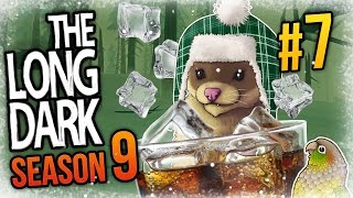 The Long Dark - Ep 7 - WEASEL ON THE ROCKS ❄ Let