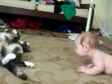 Cat teaches baby to crawl