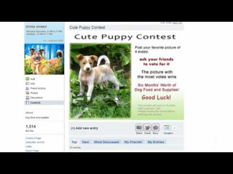 Free Contest Application For Facebook Pages