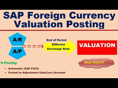 SAP Foreign Currency Valuation Posting Interview Questions