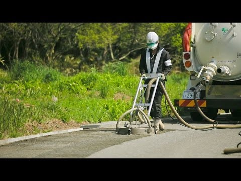 Living in Fukushima : Stories of Decontamination and Reconstruction