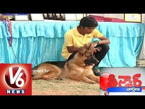License Compulsary for all Pet Dogs in Hyderabad - Teenmaar News