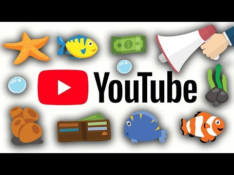 Why are aquarium channels pushing products and not knowledge