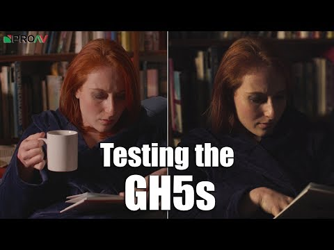 GH5s High ISO Test - Compared to the A7s II, EVA1 & GH5