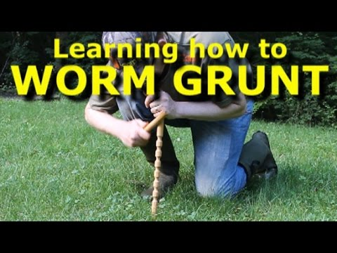 Worm grunting - charm earthworms out of the ground - with Worm Gitter