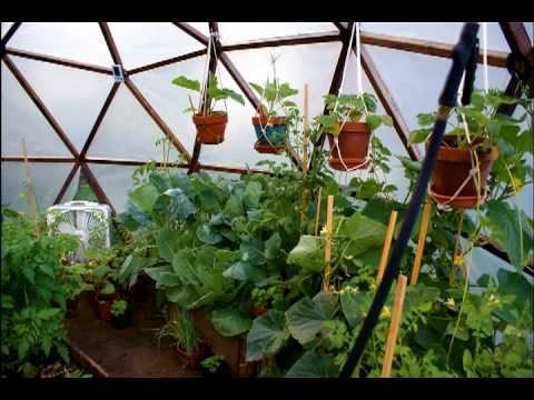 A Do-It-Yourself GeoDome Greenhouse