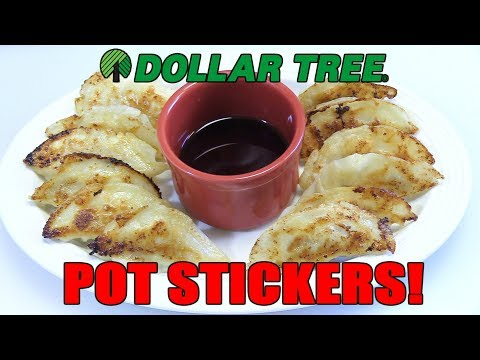 Dollar Tree $1.00 Pot Stickers!! WHAT ARE WE EATING?? - The Wolfe Pit