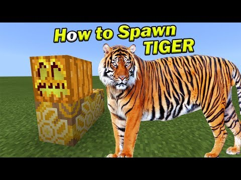 How to Spawn a TIGER | Minecraft PE
