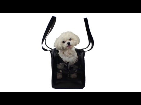 The Best Luxury Pet Carrier