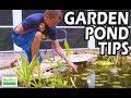 Garden Pond Tips,  Water Pond Plants