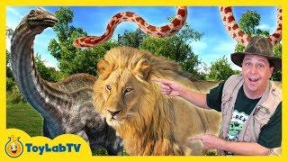DINOSAUR CAPTURED! Animal Adventure Park Family Fun Zoo Trip, Children's Outdoor Activities for Kids