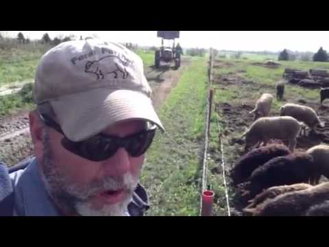 Electric Fence- Forage- Tilling Part 2 - A Farmers  Life