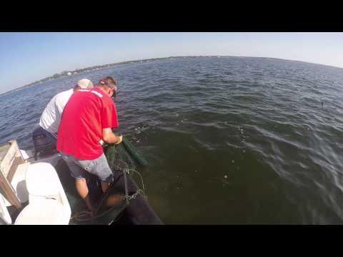 Small Boat Shrimping in Peridio Bay Alabama