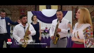Download Delia Barbu - Nunta Cosmin si Andreea la Domeniile Cimpeanu