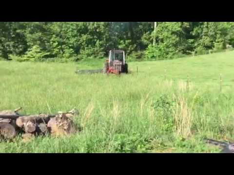 Cutting hay 1st cutting ( cutting with International 1086 and New Holland 617 disc cutter Part 1