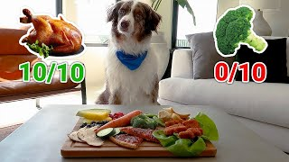 Cute Dogs Rate the BEST and WORST Foods