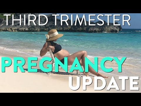 3rd Trimester Pregnancy Update! Weight Gain, Cravings and other Symptoms