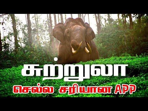 சுற்றுலா செல்ல சரியான App | Best Place in TamilNadu Tourist Trip App in Tamil - Wisdom Technical