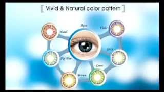 VISION SCIENCE Company