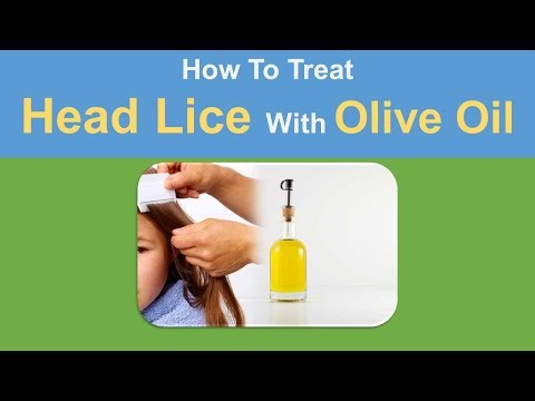 Home Remedy FOr Head Lice - how to treat head llice with olive oil